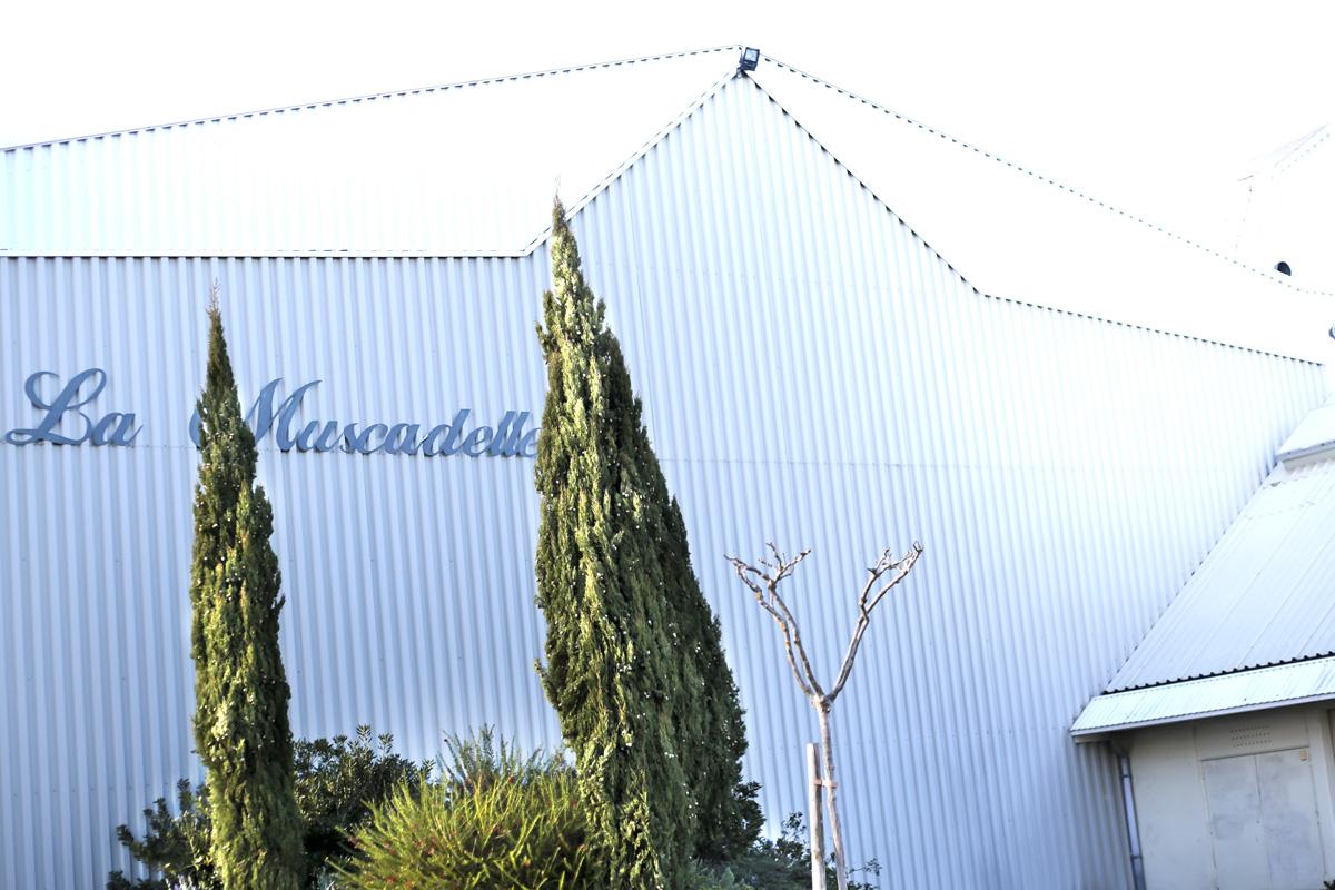 Gynmase de la Muscadelle à Pinsaguel, proche de Toulouse